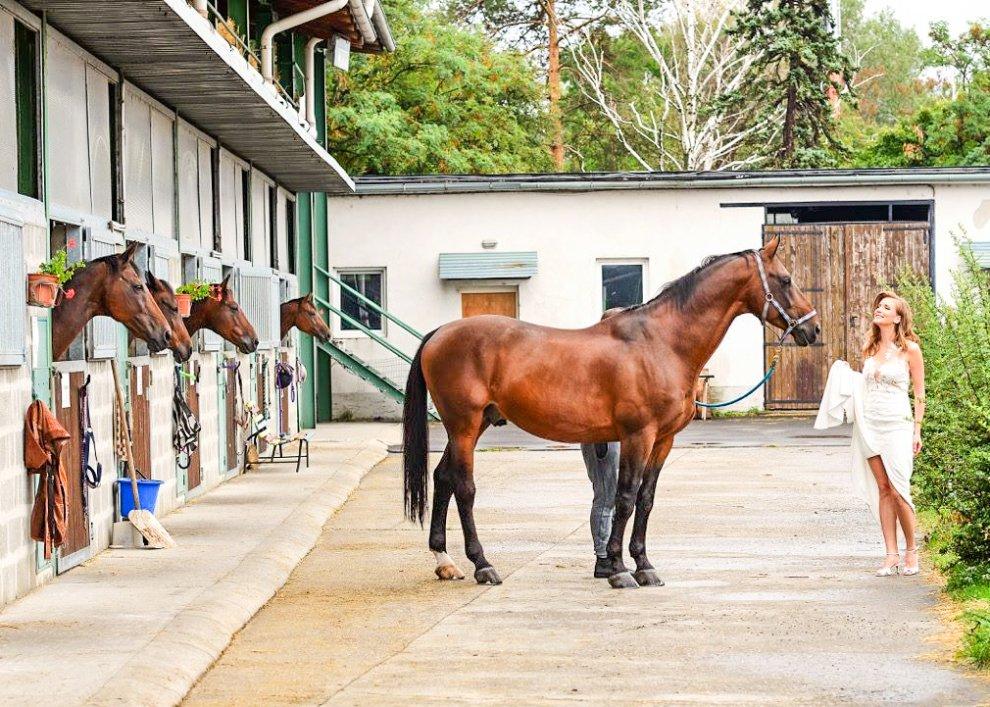 Zámocký pobyt s koňmi