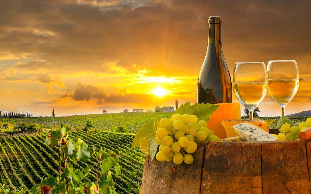 Znojmo: vinařský pobyt s polopenzí a slevou do termálů v Hotelu Bax ***